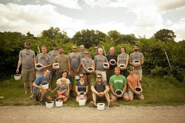Hardywood VA Blackberry Picking 2015